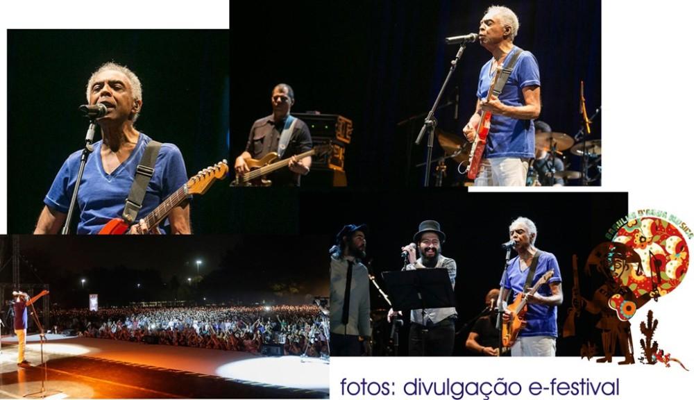 Curta Milton Nascimento no Parque do Ibirapuera (SP), de graça, sem pagar nada e na faixa! (2/2)